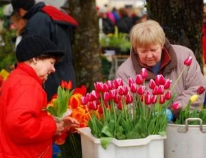 türin-kukkamarkkinat-002