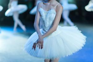 joutsenlampi-baletti-001