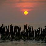 Auringonlasku Palangassa