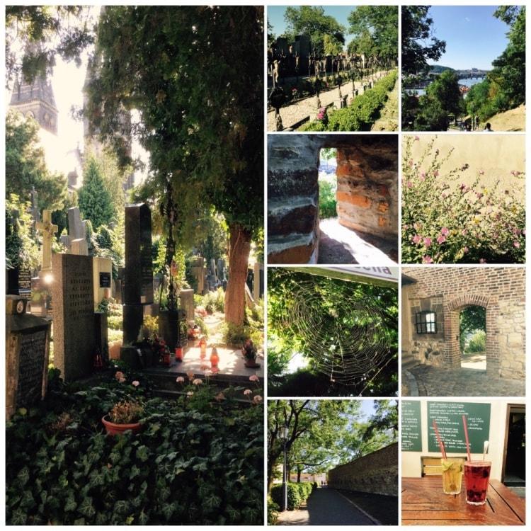 Hotellin vieressä on Unescon kohde, Vyšehrad. Alue on viihtyisä puisto, jossa mm. Hautausmaa, kirkko, ravintoloita ja kauniita näkymiä.