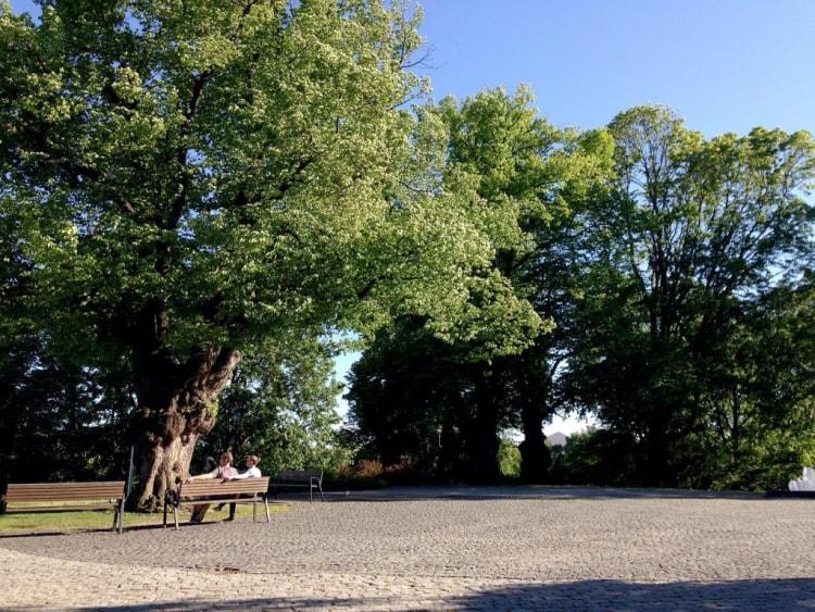 Puistossa voi katsella kaupungin menoa.