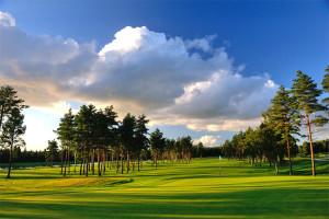 niitvalja-golf-002