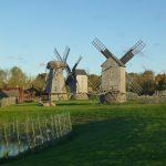 Anglan tuulimyllykukkula Saarenmaalla