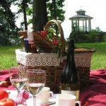 Piknikkori ja kuohuvaa nurmikolla Vihulassa