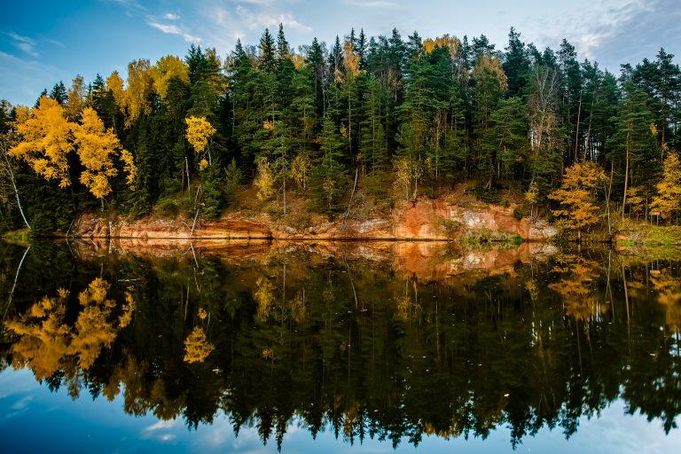 Metsä heijastuu järvelle Gaujan kansallispuistossa