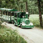 Juna joka kuljettaa vierailijoita Lottemaassa
