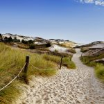 Polku kohti rantaa hiekkadyyneillä.