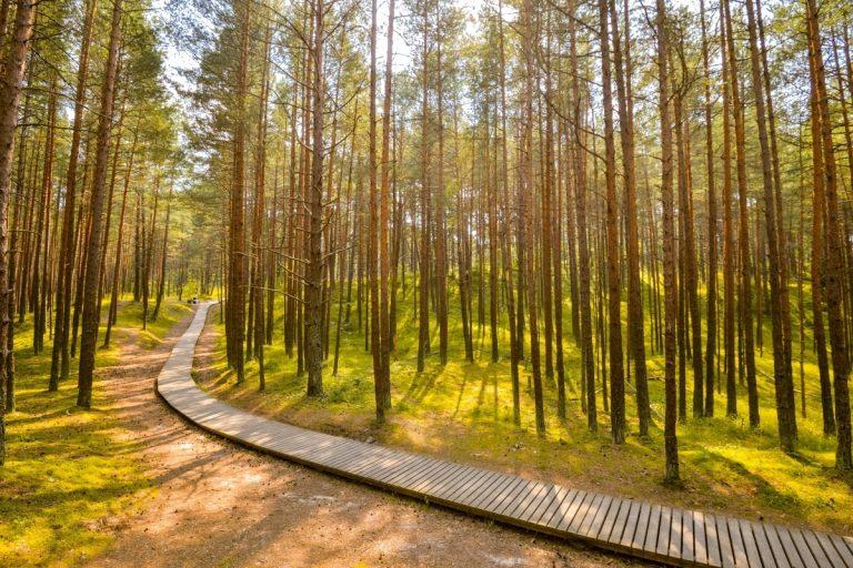 Ragakapan luonnonpuisto