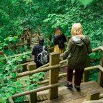 Sliteren luonnonpuisto