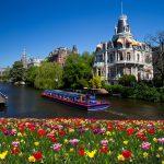 Tulppaanimeri joen varrella kesällä