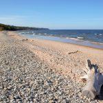 Ajopuu kivisellä hiekkarannalla.