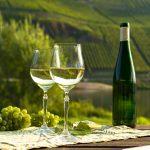 Viinilasit ja pullo Mosel -laaksosta