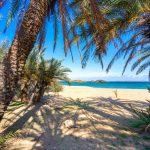 Kaunis maisema, jossa näkyy palmuja, turkoosia vettä ja trooppista rantaa