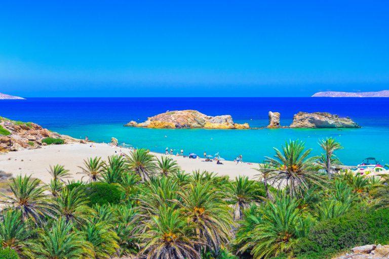 Palmuja valkoisen hiekkarannan ja kirkkaan sinisen veden äärellä