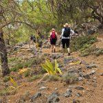 Ihmisiä kulkee jonossa reput selässä ylös vuoristoista polkua.
