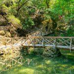 Puinen silta kirkkaan lammen yllä vehreässä Perhoslaaksossa.