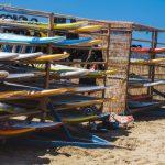 Useita surffilautoja telineessä aurinkoisella rannalla.