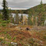 Immeljärvi ja Levi tunturi