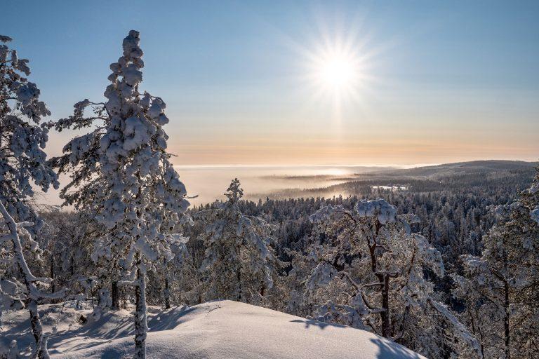 Näkymä lumisen vaaran päältä kirkkaana aurinkoisena päivänä.