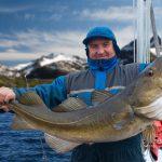 Kalastaja esittelee pyydystämäänsä isoa turskaa veneellä. Taustalla vuoria.