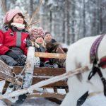 Lumisissa maisemissa tuntuu joulun taika rekiajelulla.