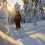 Lumikenkäilyä lumisessa metsässä