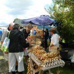 Sipulitien markkinat
