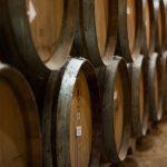 Viinitynnyreitä pinottuna kellarissa