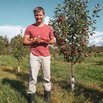 Mies omenapuun vieressä omenoita käsissään