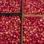 Punaisia omenoita laatikoissa ylhäältäpäin kuvattuna