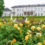 Meripihkamuseon kartanotyyppinen rakennus ja puutarha, edustalla keltaisia ruusuja.