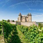 Viiniviljelimiä ja linna, Loire Ranska